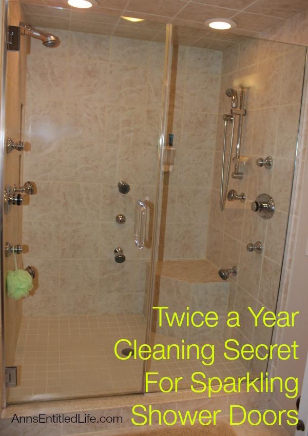 Shower Door Cleaning Hack