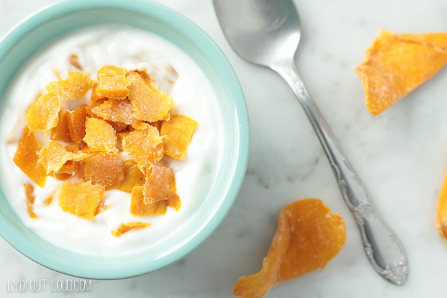 Homemade Tropical Mango Greek Yogurt - so easy to make and so delicious!