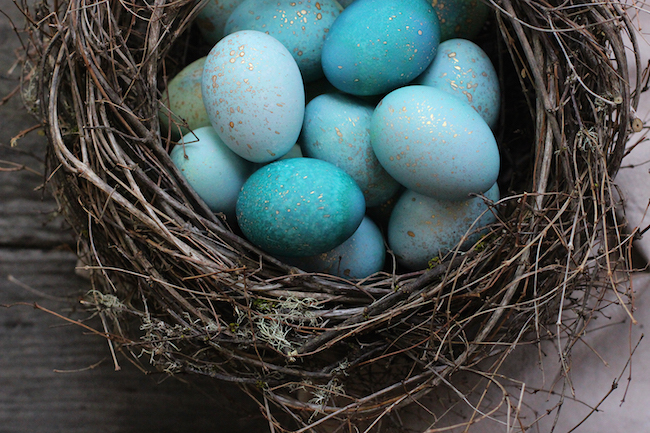 Love these DIY dyed robin eggs!