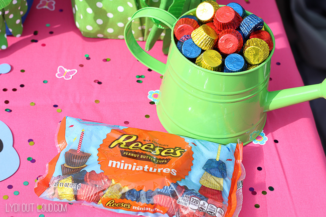 Reese's cups garden birthday party