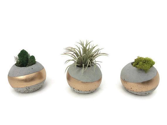 Petite Orb Succulent Planters - so adorable!