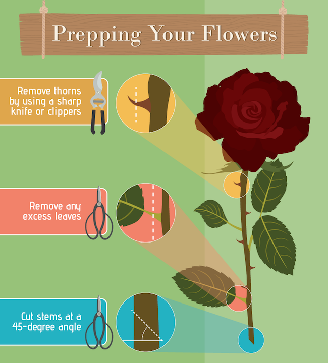 Flower Arrangements Basics: The Friday Find: Arrange Flowers Like A Pro