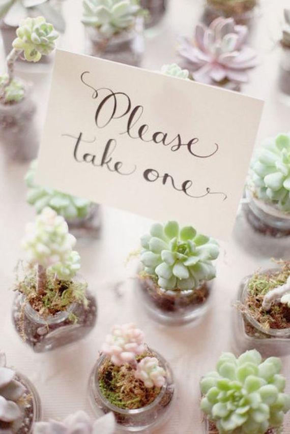 Succulent wedding favors - so darling!