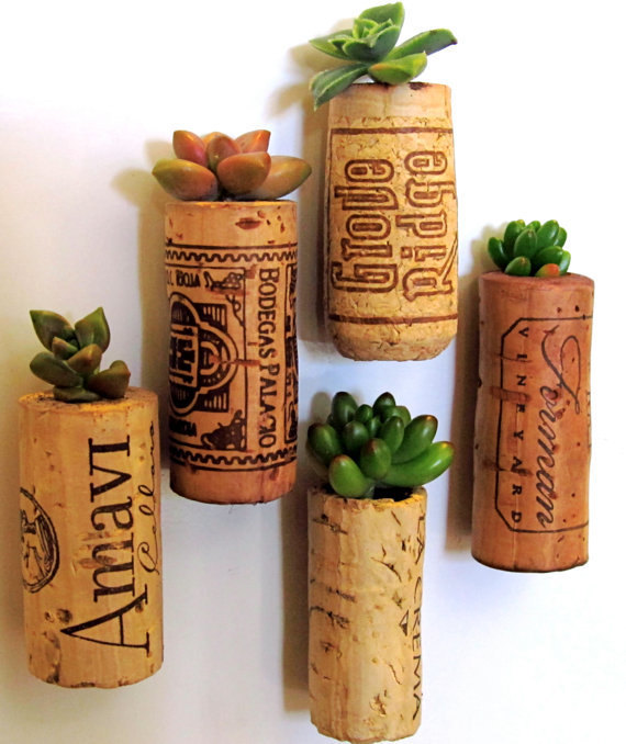 Wine cork succulent planter magnets - these are adorable!