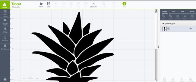Pineapple Doormat design on Cricut