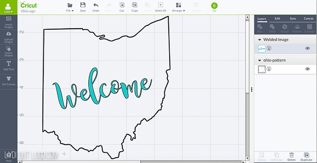 Ohio Welcome bag with Cricut