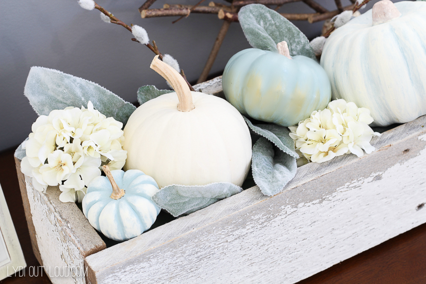 decorative-pumpkins-6803