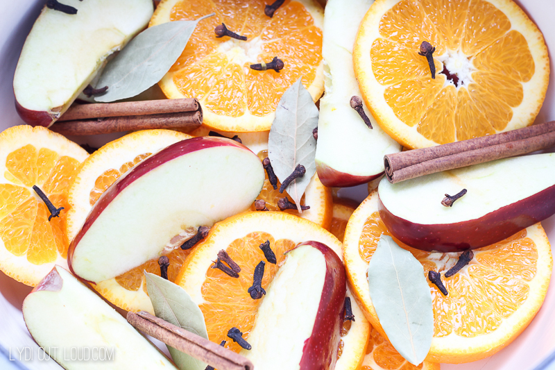 Fall stovetop potpourri smells so good and makes the house feel so cozy!