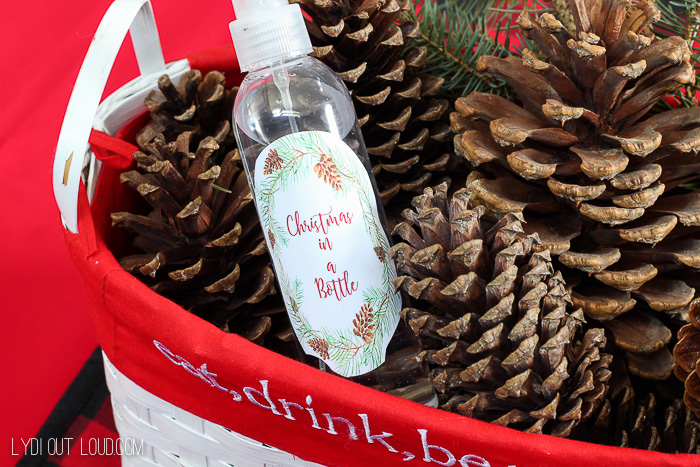 Christmas in a Bottle - refresh those Cinnamon Pine Cones!