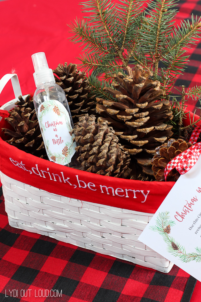 Wonderful smelling Christmas in a Bottle Spray smells like Cinnamon Pine Cones!