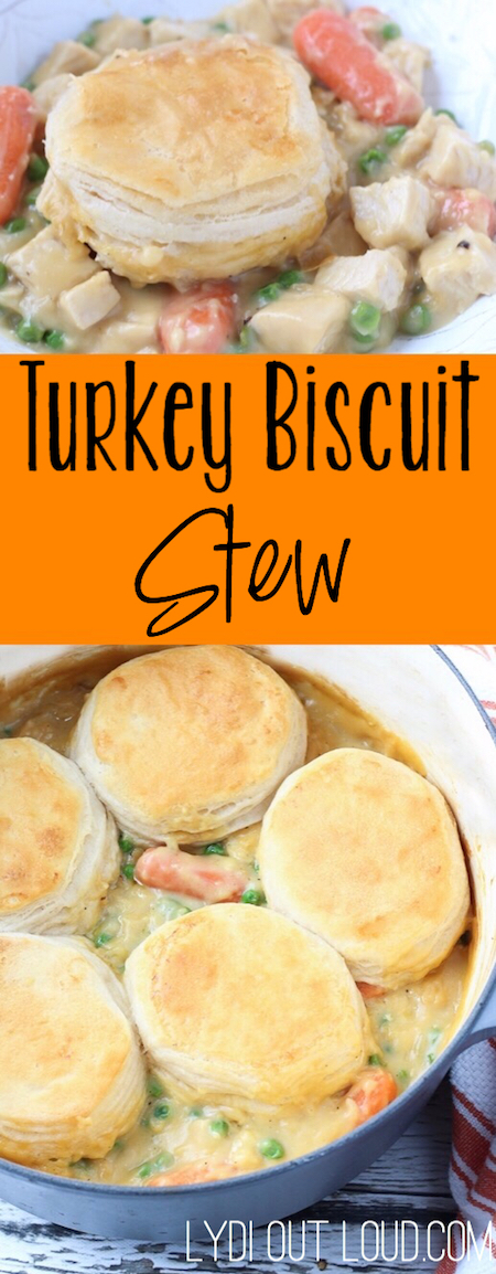 Turkey Biscuit Stew - this is the ultimate comfort food!
