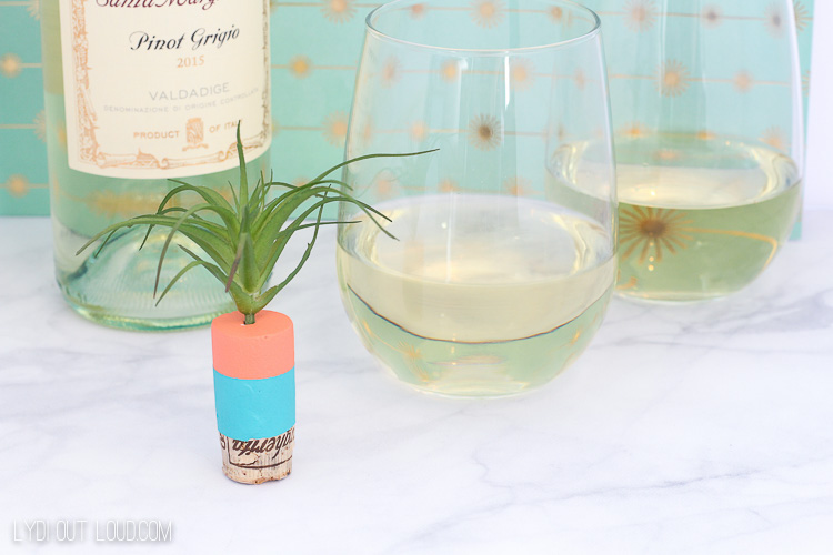 Air Plant DIY Wine Stopper