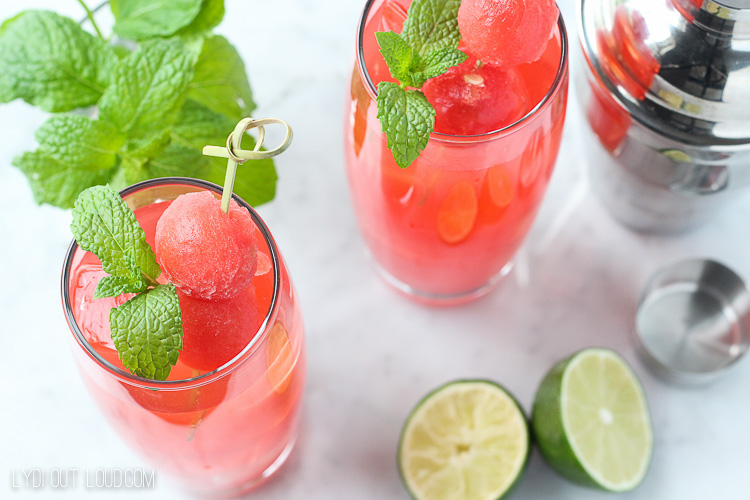 Watermelon Mint Vodka Gimlet Recipe