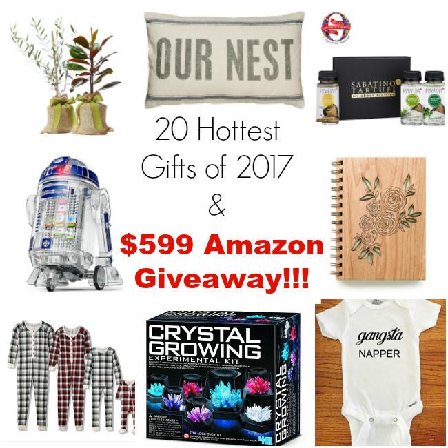 The 20 Hottest Gifts of 2017 plus $599 Amazon Giveaway