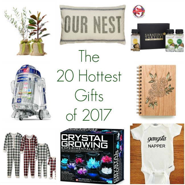 The 20 Hottest Gifts of 2017