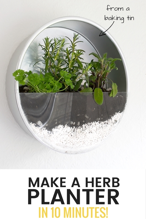 Baking Tin Herb Garden