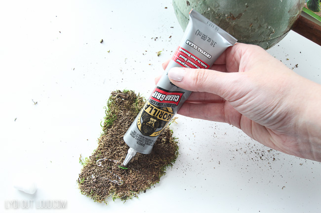 Apply adhesive to sheet moss for DIY topiary
