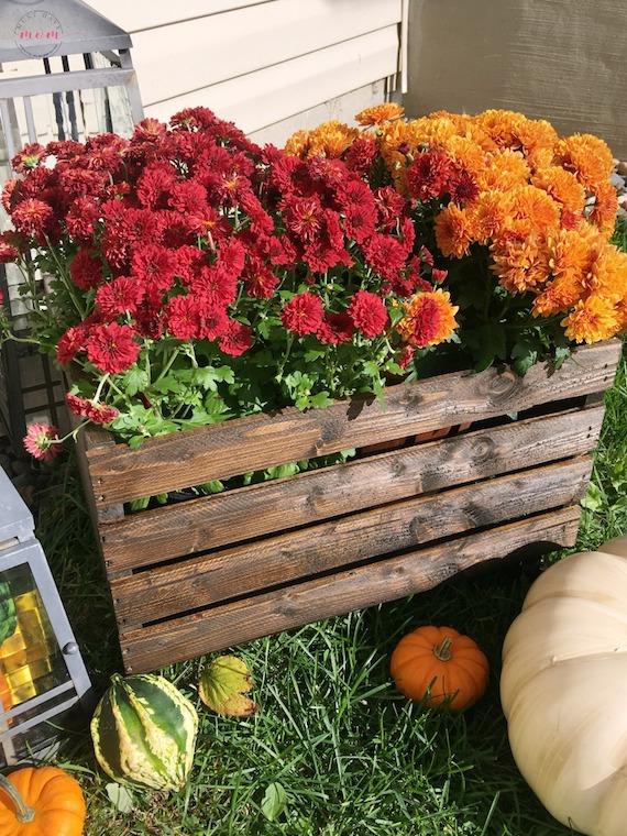 DIY Crate Planter Fall Porch Decoration
