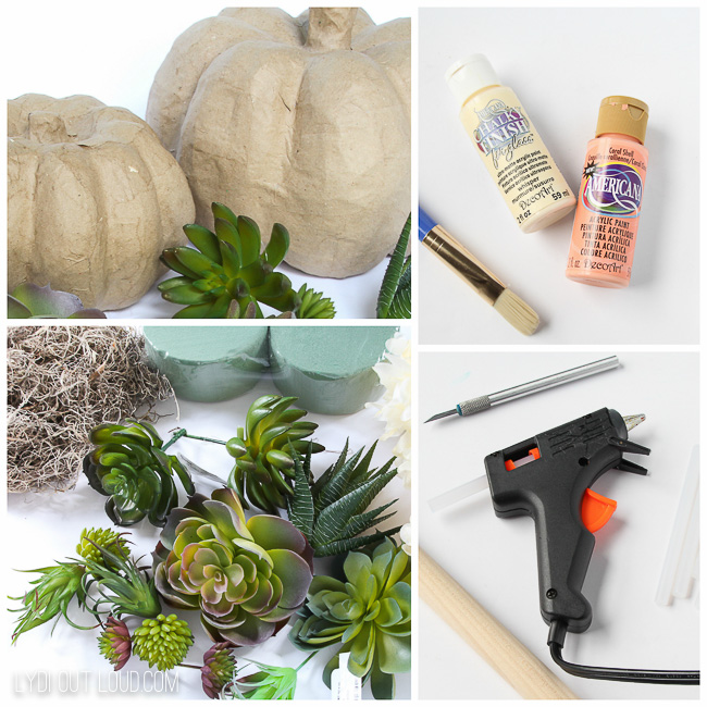 Succulent Pumpkin Topiary Supplies