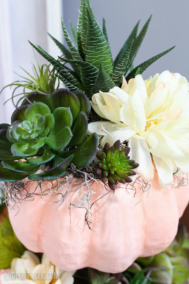 Arrange succulents in pumpkin topiary