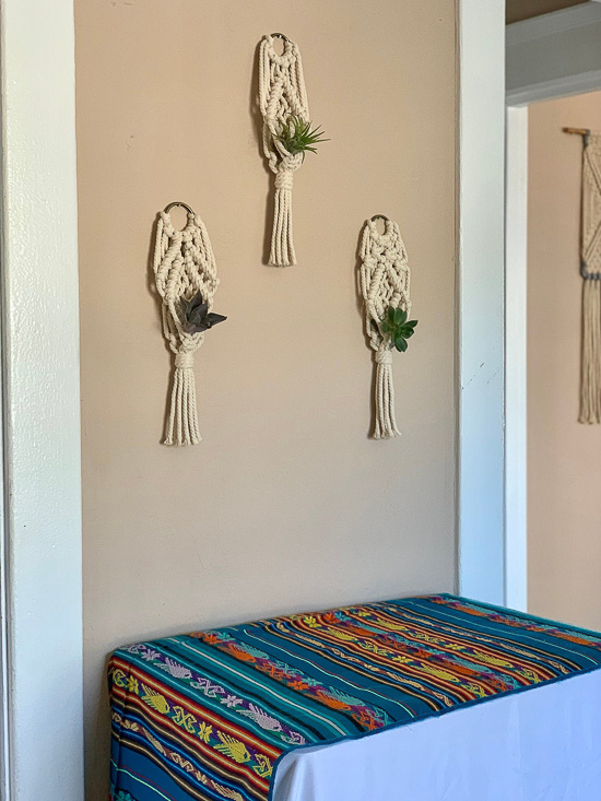 3 Wall Air Plant Holders