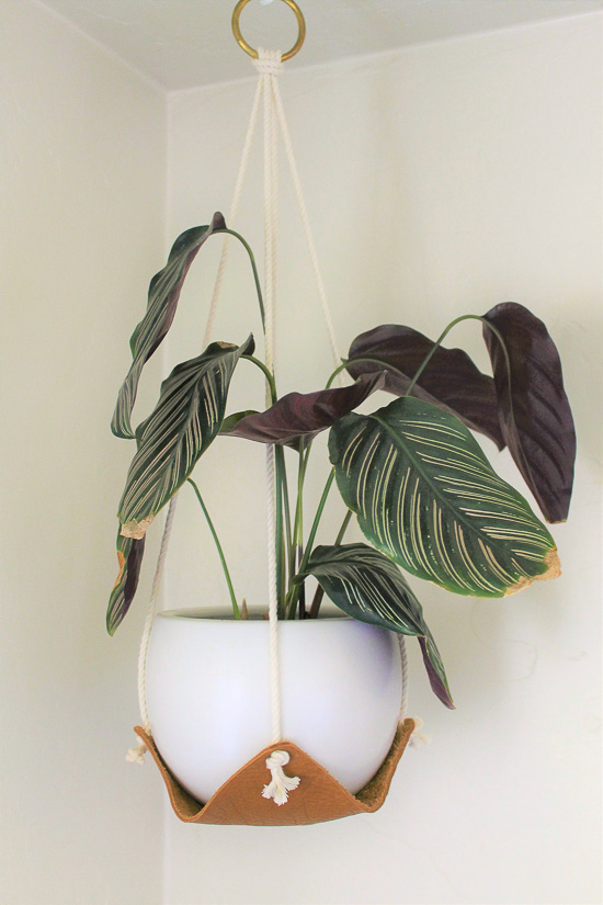Leather and rope plant sling