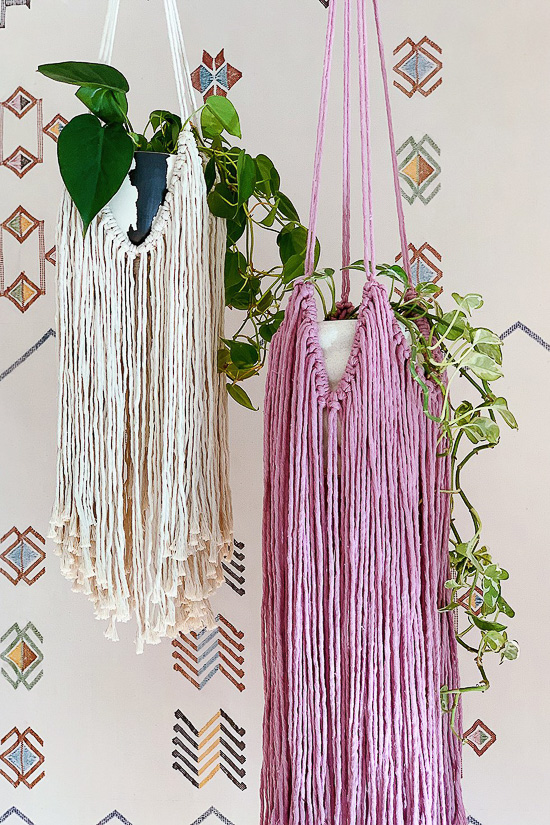 DIY Fringed Macrame Plant Hanger - Honestly WTF