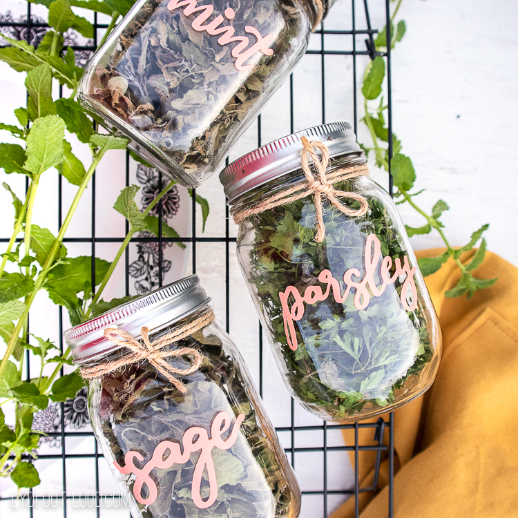 dried herb labels with circut joy